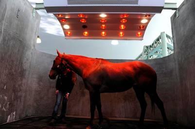 Es una luz. En gabinetes especiales, secan a los caballos después de las caminatas en el agua.