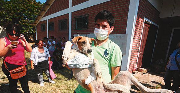 Los activistas rescataron a los animales que estaban en la perrera