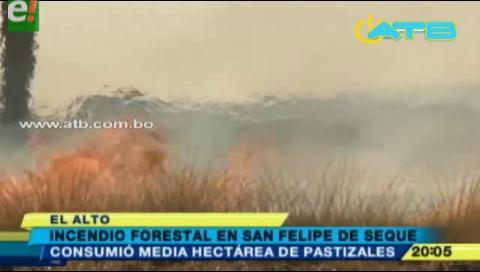 Incendio consumió media hectárea de pastizales en El Alto