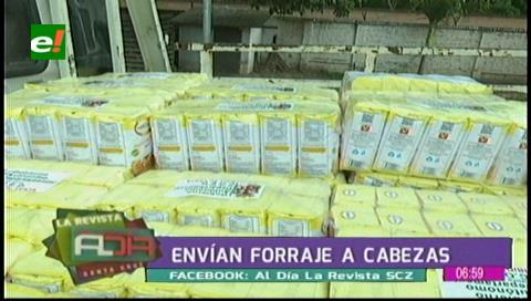Sequía: envían alimentos y forraje a Cabezas