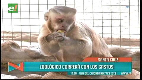 El Zoológico cubre los gastos de curación de niño mordido