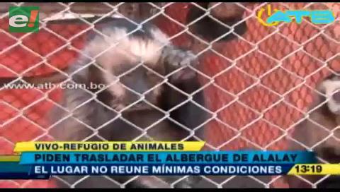 Piden trasladar el albergue de animales de la laguna Alalay