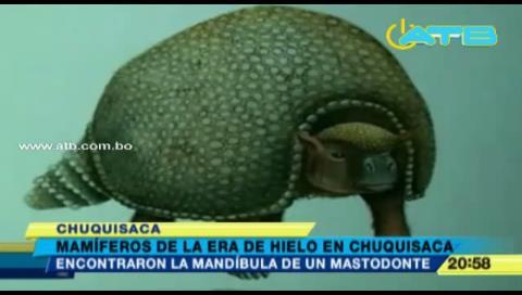 Encuentran restos de mamíferos de la era de hielo en Chuquisaca