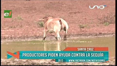 Ganaderos dicen que paralizaron la ayuda para combatir la sequía