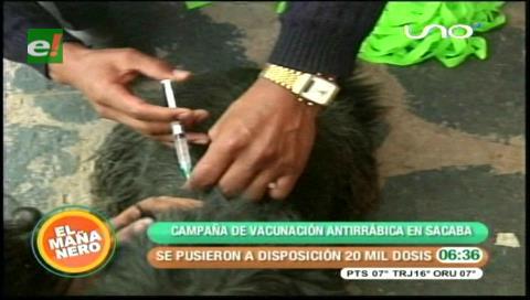 Campaña de vacunación antirrábica en Sacaba