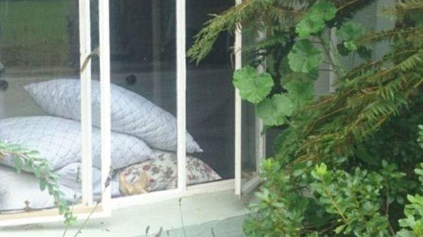 La ventana por donde entraron los ladrones