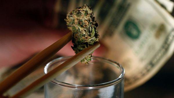 El Director Nacional de Policía de Uruguay, Mario Layera, dijo que la ley de regulación de la marihuana aprobada en 2013 no implicó directamente una caída del tráfico de esa droga y que el narcotráfico ha generado un aumento de asesinatos