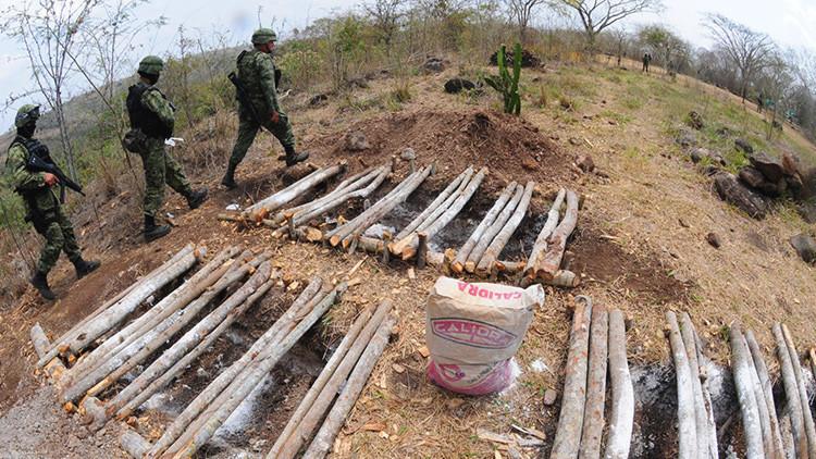 ¿La mayor del mundo? La fosa clandestina más grande de América Latina está en Veracruz