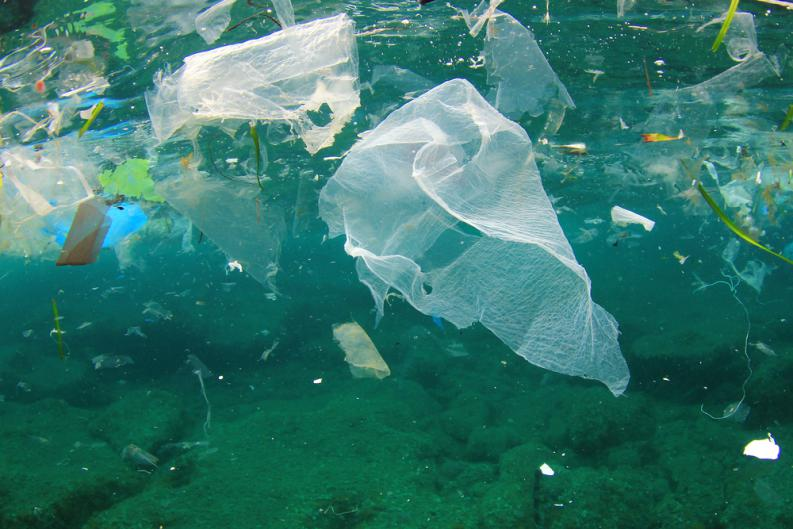 oceano basura