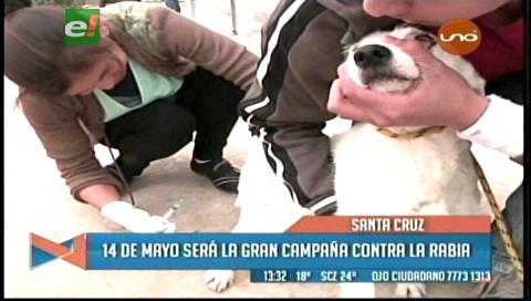 Gran campaña de vacunación contra la rabia canina será el 14 de mayo