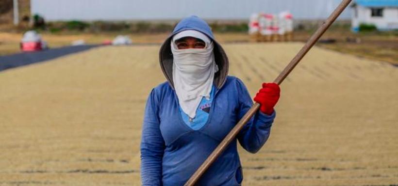 Nicaragua es el país con el sueldo mínimo más bajo de América Latina. Foto: GettyImages