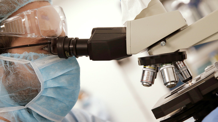 Científicos prueban en gusanos un nuevo método para alargar la vida