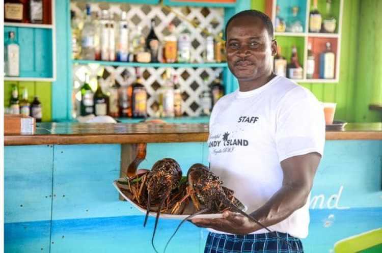 Langostas recién pescadas uno de los platos gourmet de la isla del Caribe