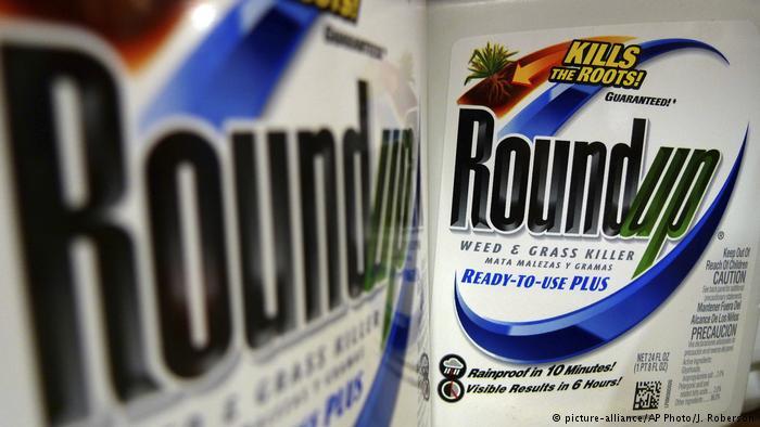 Monsanto-Bayer Unkrautvernichter Roundup (picture-alliance/AP Photo/J. Roberson)