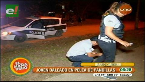 Pelea entre pandillas: Balean a adolescente en el barrio Caminero