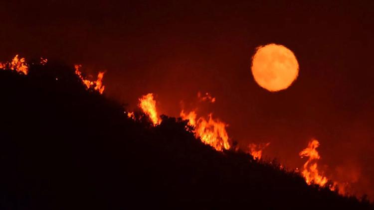 Los incendios forestales provocan evacuaciones y múltiples daños en California (FOTOS, VIDEOS)
