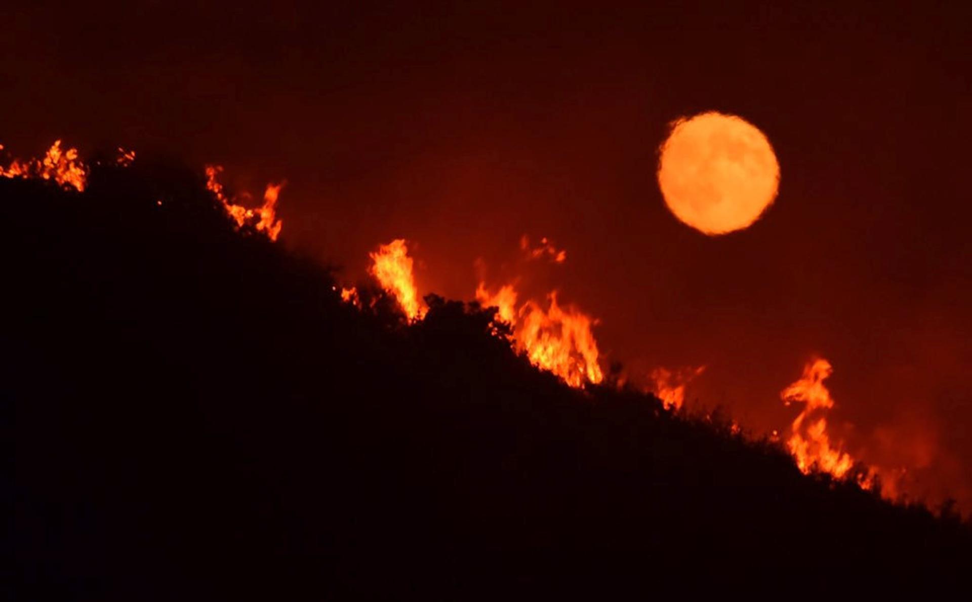 Unos 90.000 clientes se quedaron sin electricidad el sábado por la noche después de que el Departamento de Aguas y Electricidad cerrase una central eléctrica que se había incendiado en el valle de San Fernando