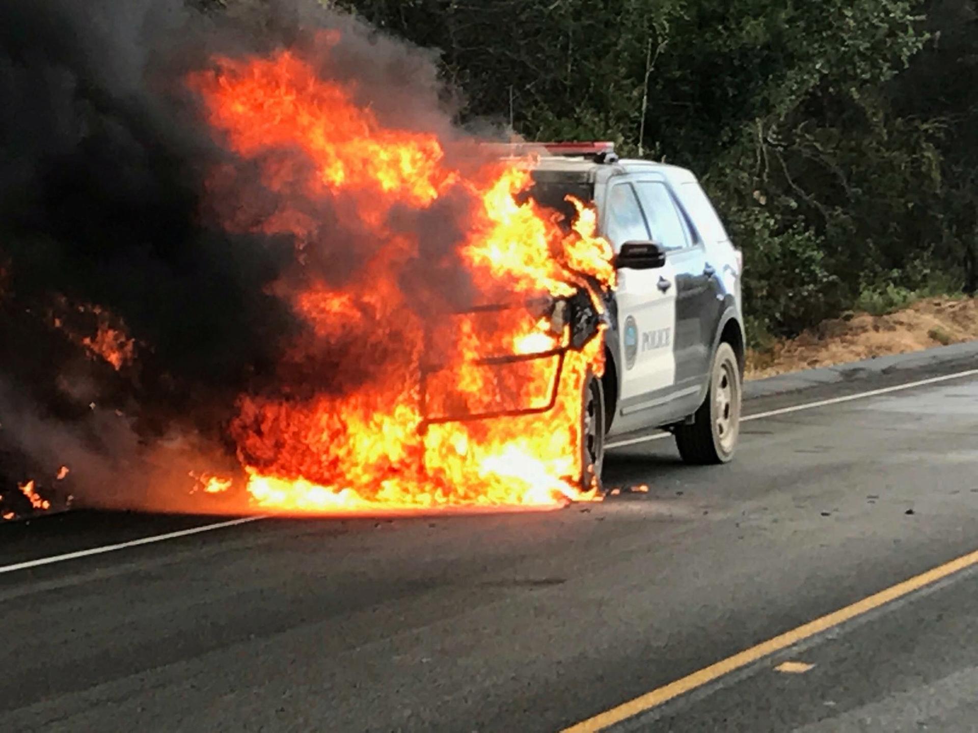 El incendio de Whittier, en el condado de Santa Bárbara, en el sur de California, estaba afectando 31,56 kilómetros cuadrados y sólo había sido controlado en un 5%