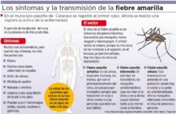 Niña muere por fiebre amarilla y centros de salud harán vigilancia