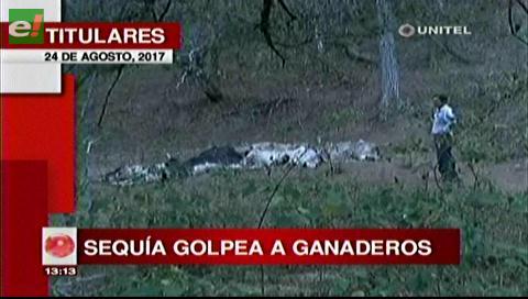 Video titulares de noticias de TV – Bolivia, mediodía del jueves 24 de agosto de 2017