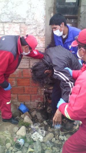 El Alto: Rescatan a dos personas desnutridas que convivían con animales muertos