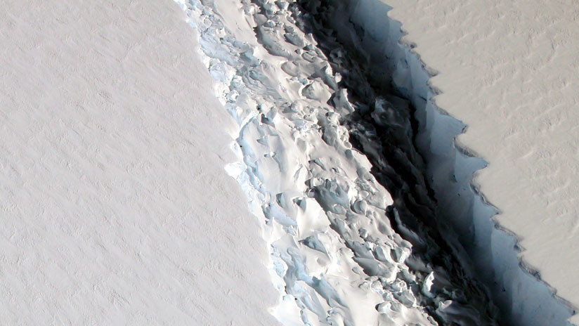 La ruptura de un iceberg desvela un ecosistema oculto durante más de cien mil años