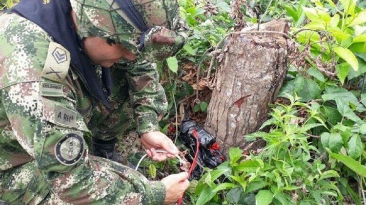 Los cultivos de coca se multiplicaron el último año (Ejército de Colombia)