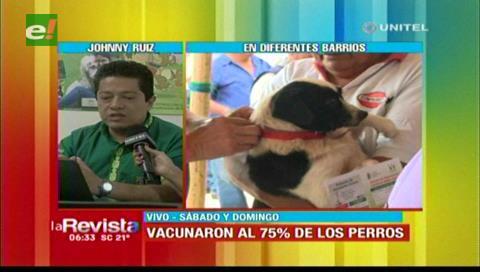 Zoonosis: 280.681 canes fueron vacunados este fin de semana en Santa Cruz