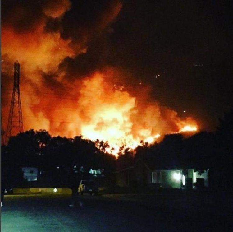 El fuego arrasó con unas 2.000 hectáreas