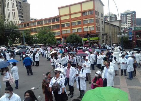 Profesionales protagonizaron una marcha por el centro de La Paz. Foto: José Lavayen