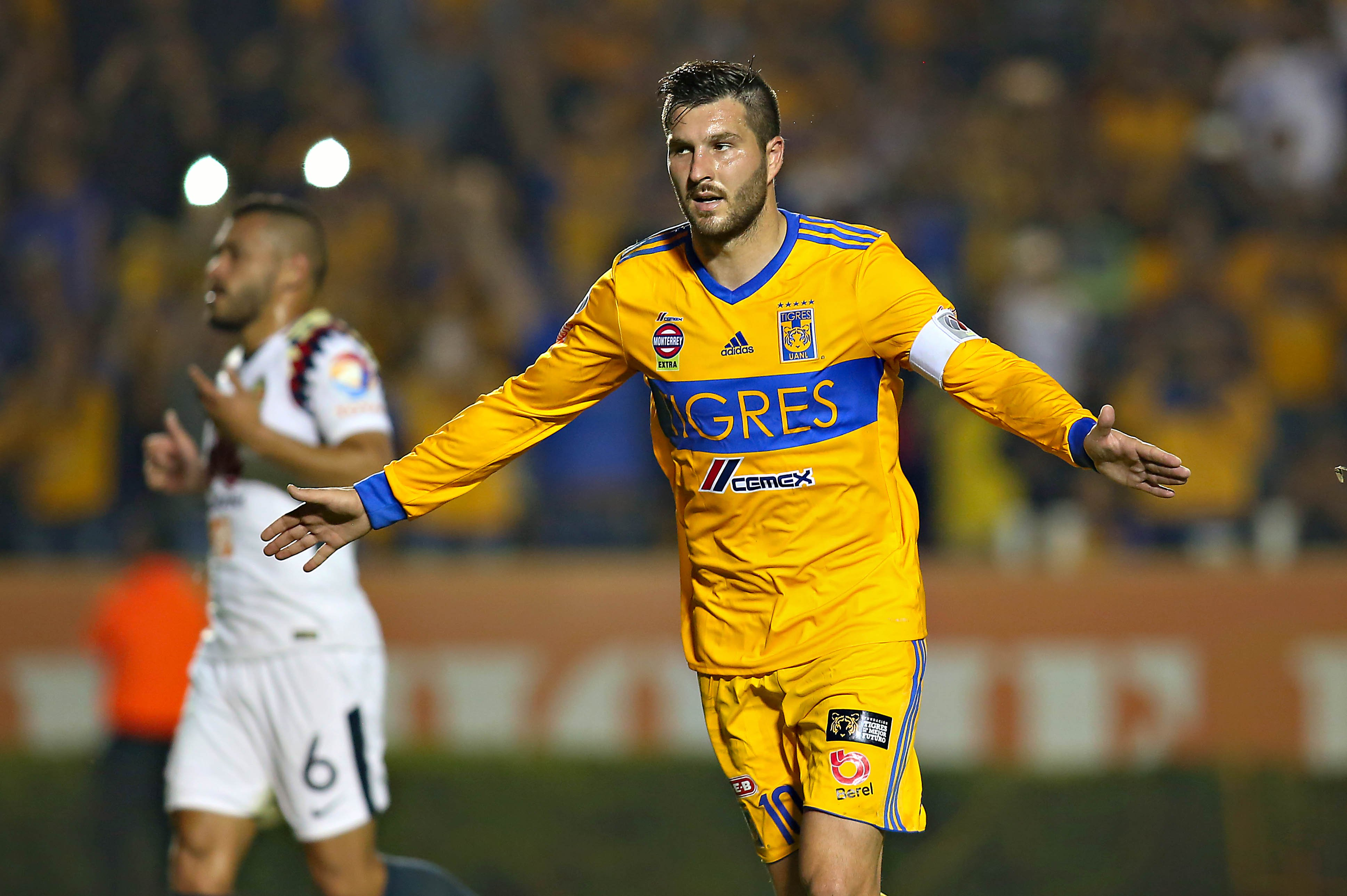 Image result for gignac