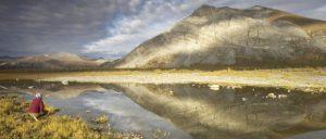 H. R. 1146, Arctic Cultural and Coastal Plain Protection Act.