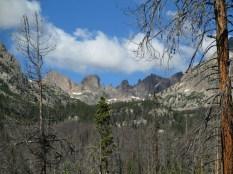 Zodiac Ridge through the trees
