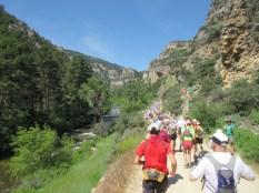 Mile 0. Tongue River Canyon.