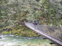 Kiwis love their swing bridges! We encountered 4 in just 6 km of hiking. The trail conditions were great almost everywhere else as well.