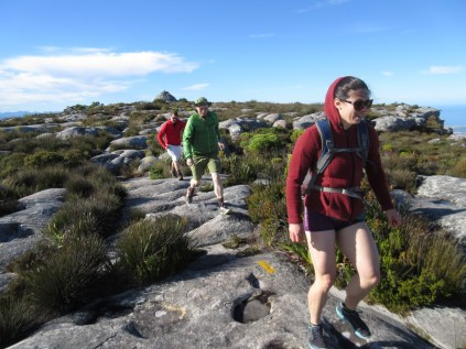 Running back from Maclear Beacon.