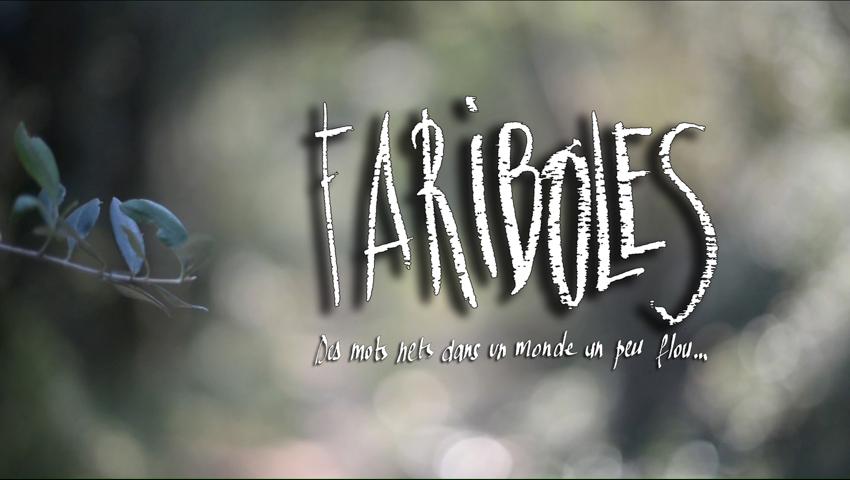Fariboles - Eric Clément-Demange - Eric Frèrejacques