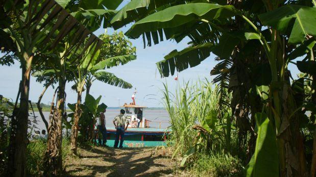 ¿Cuál debería ser el plan para el desarrollo de la Amazonía?