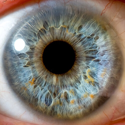 Breakthrough as human corneas were printed for first time