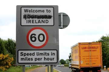 Ireland hopes for agreement on Northern Irish trade within weeks