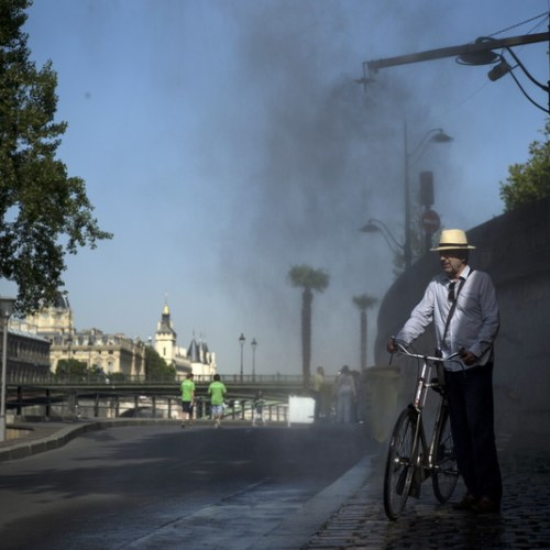 Paris authorities see trees as solution to excessive heat