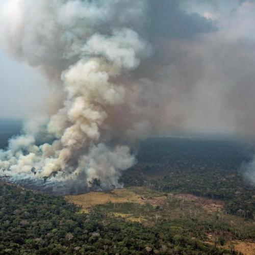 G7 to release funds to fight fires in the Amazon