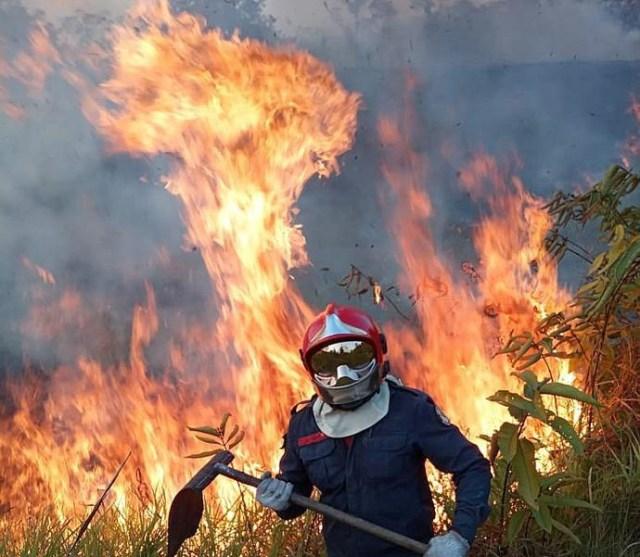 Amazonia fires