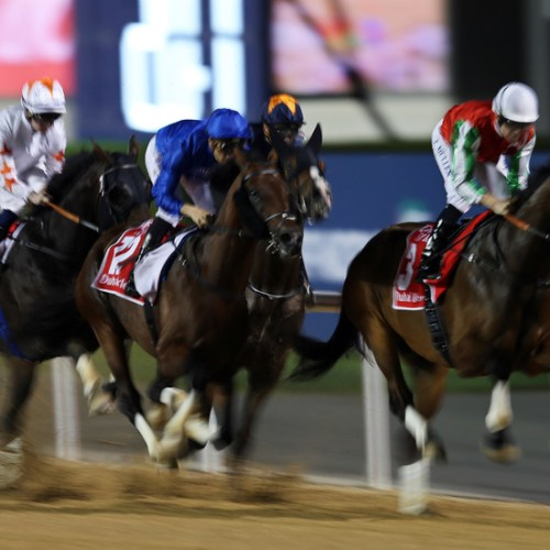 Saudi Arabia to stage world's richest horse race in 2020 with $20 million prize