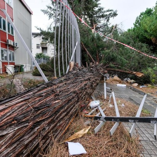 Wind up to 100 km per hour causes damages in Sicily