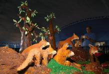 Bangalore hosts its 45th annual cake exhibition