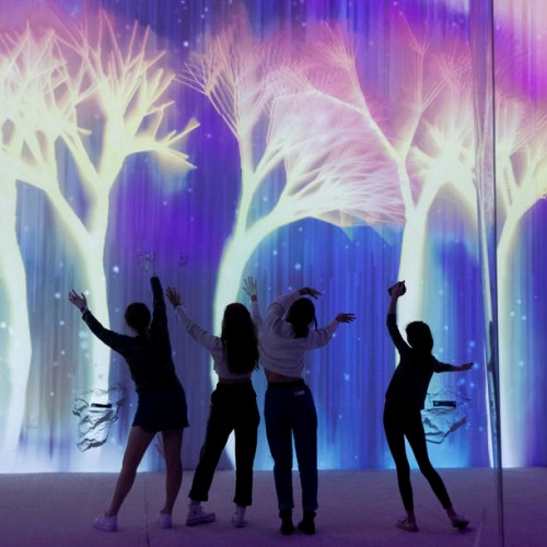 Photo Story: 'Aurora: The Spirit of Northern Lights' interactive installation in Washington