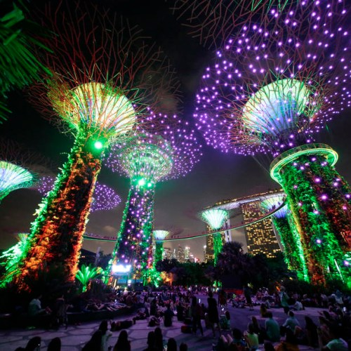 Photo Story: Light show at Gardens by the Bay in Singapore