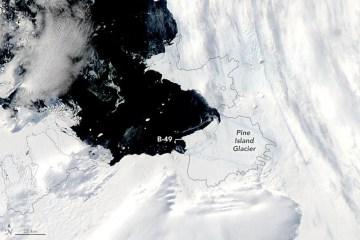 Large iceberg splits off Antarctica's Pine Island Glacier