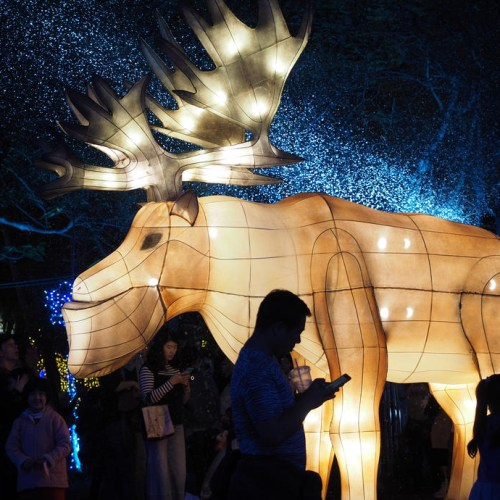 Photo story: The 2020 Taiwan Lantern Festival